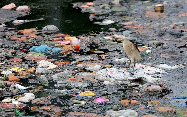 un-mare-da-salvare-allarme-plastica