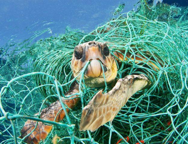 un mare da salvare allarme plastica